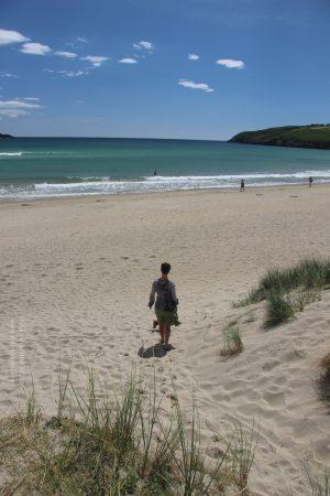 Barleycove Beach revealed